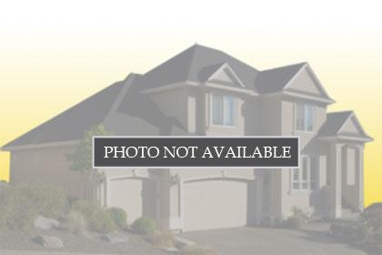 100 Tioga WAY , TRACY, Single-Family Home,  for sale, Selina Chang, Realty World - Dominion